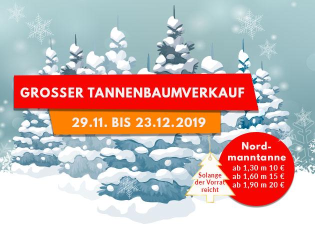 Großer Tannenbaumverkauf vom 29.11.-30.11.2019
