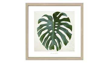 Gerahmtes Bild Scandic  Green Leaf