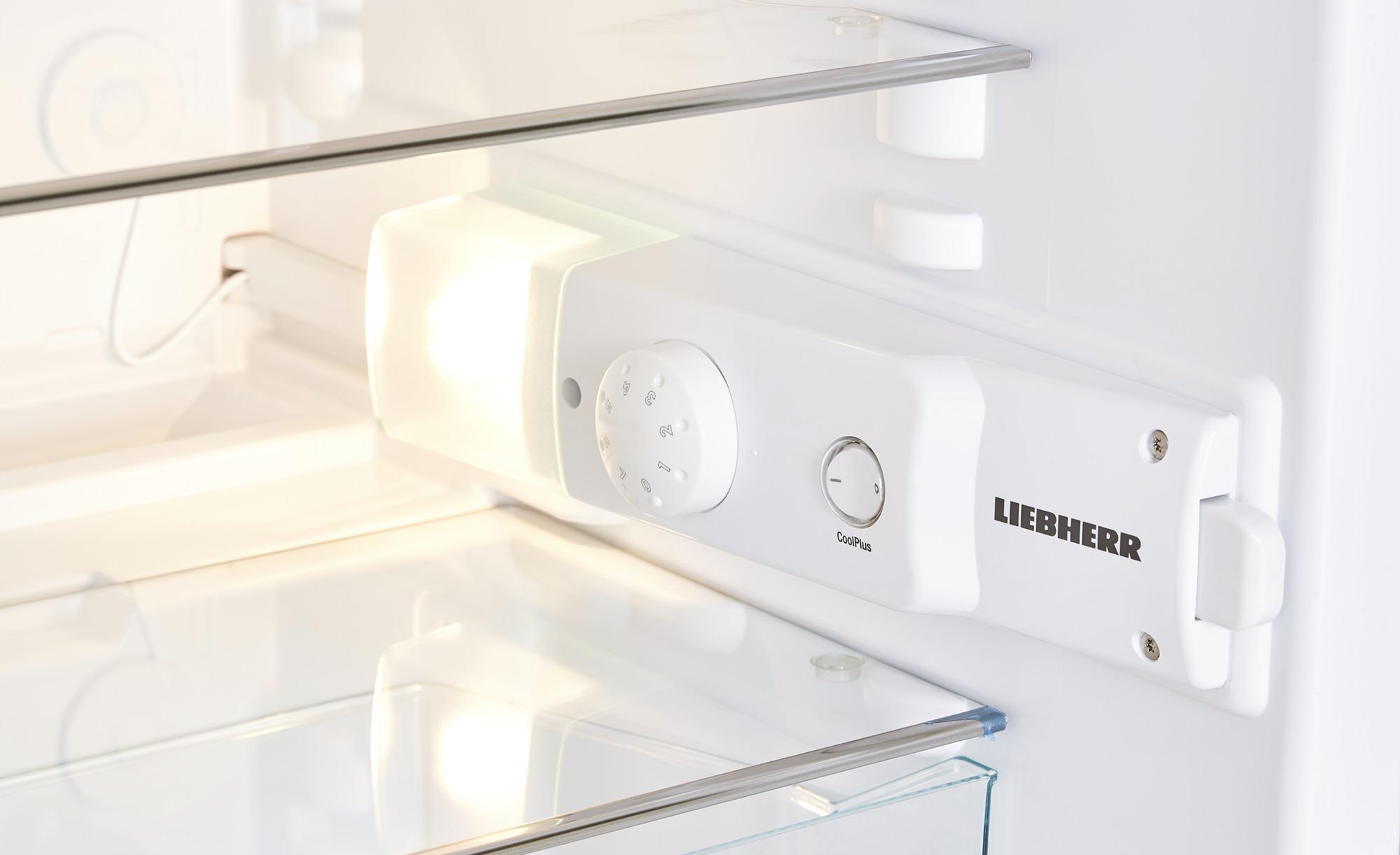 Kühlschrank Liebherr : Coole riesen der kühlschrank in der wohnküche bild