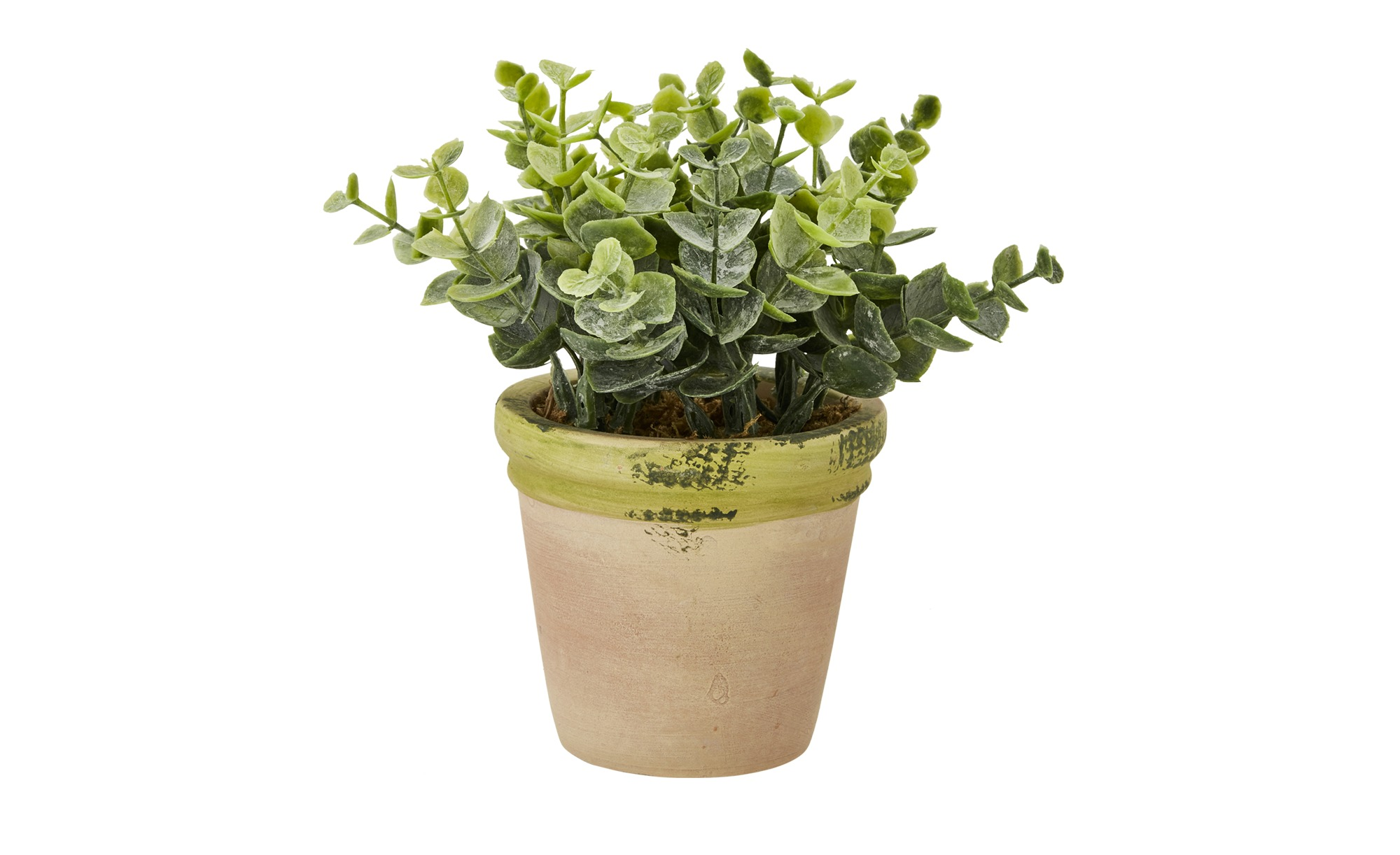 Kunstblume im Terracotta-Topf - grün - Terracotta, Kunststoff - 16 cm - Dekoration > Kunstblumen - Möbel Kraft   Dekoration > Dekopflanzen > Kunstpflanzen   Terracotta   Sconto