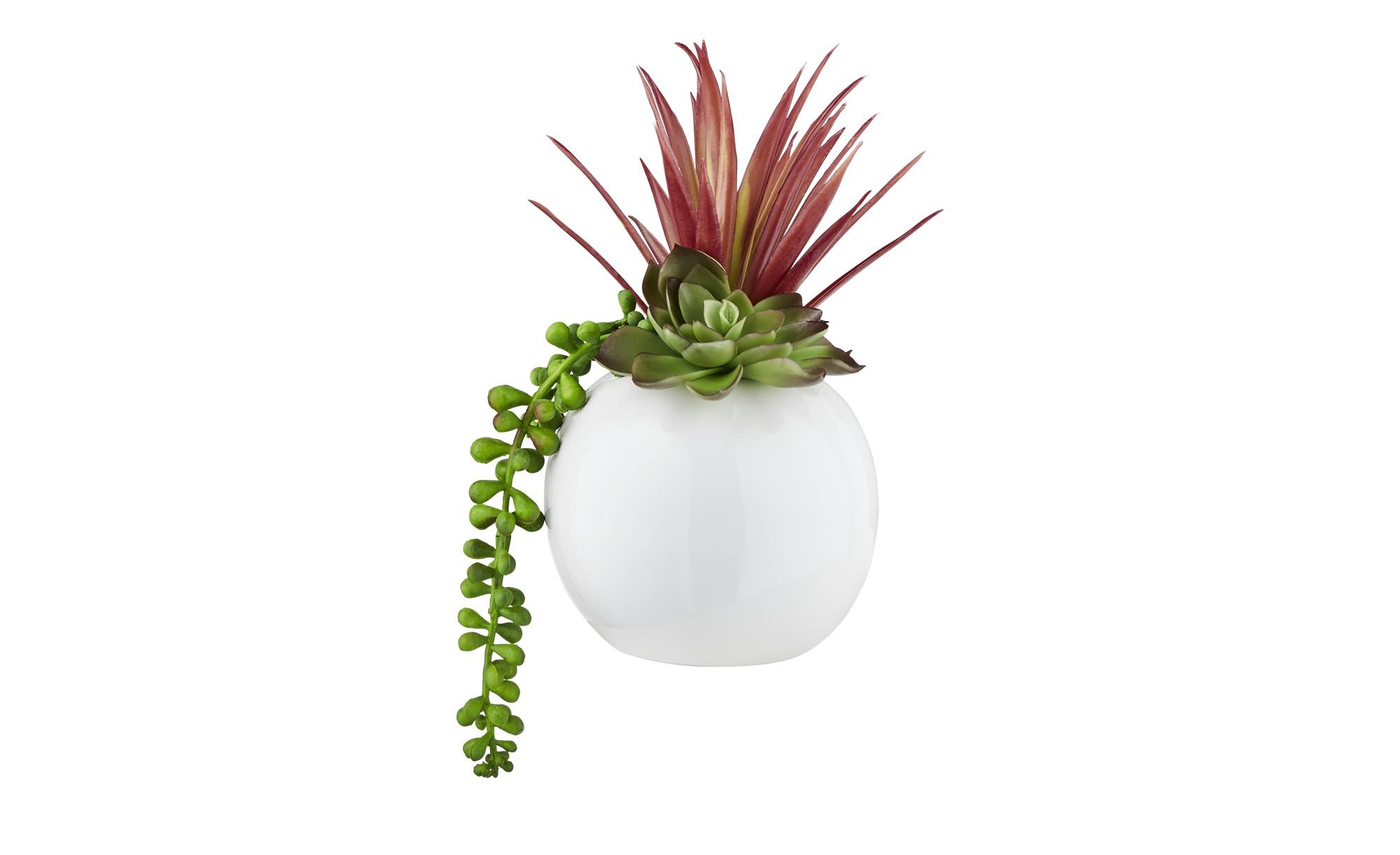 Sukkulentenmix im Keramiktopf  Kunstblume - grün - Keramik, Kunststoff - 20 cm - Dekoration > Kunstblumen - Möbel Kraft | Dekoration > Dekopflanzen > Pflanzen | Möbel Kraft