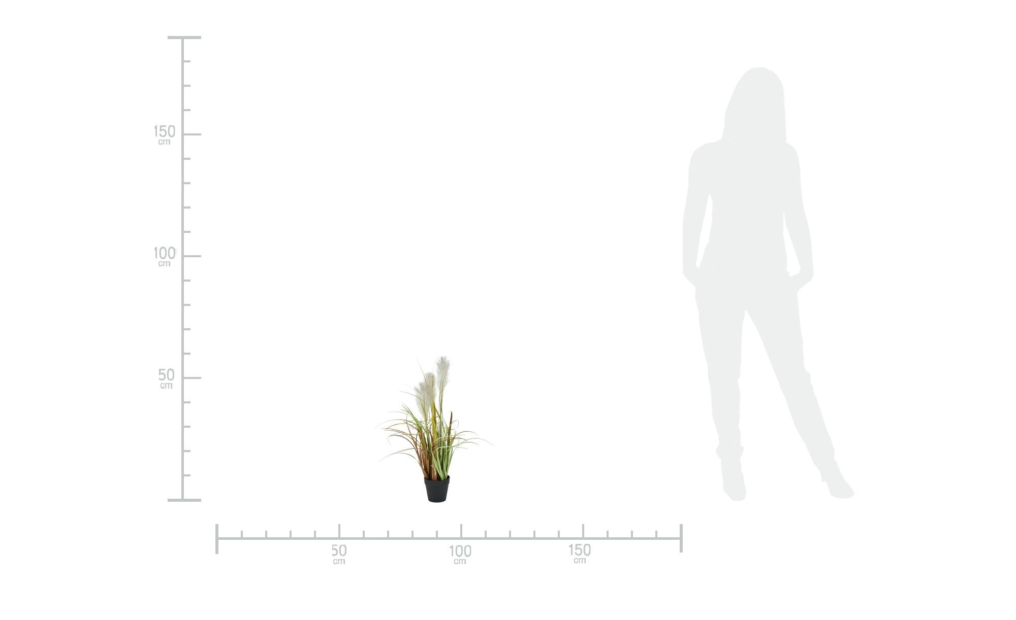 Pampasgras - grün - Kunststoff - 55 cm - Dekoration > Kunstblumen - Möbel Kraft   Dekoration > Dekopflanzen > Kunstpflanzen   Sconto