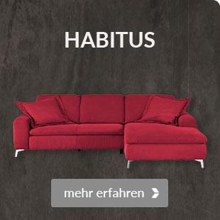 Zum Modell Habitus