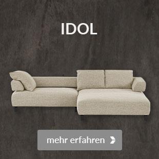 Zum Modell Idol