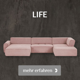 Zum Modell Life